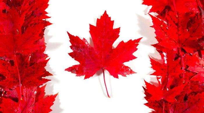 پیکاپ ویزای کانادا
